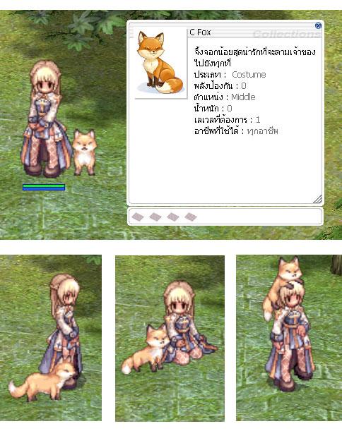 c-fox.jpg