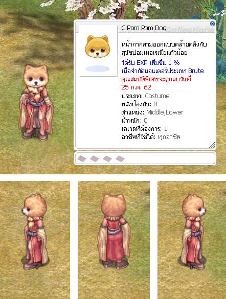 c-pompom-dog.jpg