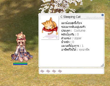 c-sleeping-cat.jpg